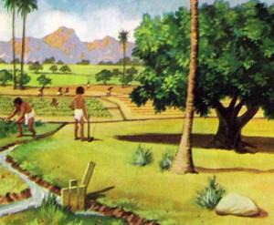 Египтяне были способными земледельцами и извлекали из земли максимум пользы.