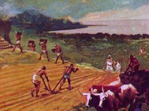 Земледелие было одним из основных занятий финикийцев, которые возделывали поля даже на склонах Ливанских гор, используя метод террасного земледелия.