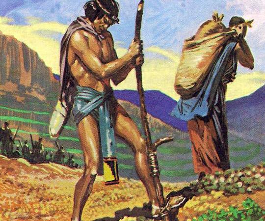 На высоте 3000 метров, где располагались поселения инков, обрабатывать поля было очень тяжелым трудом.